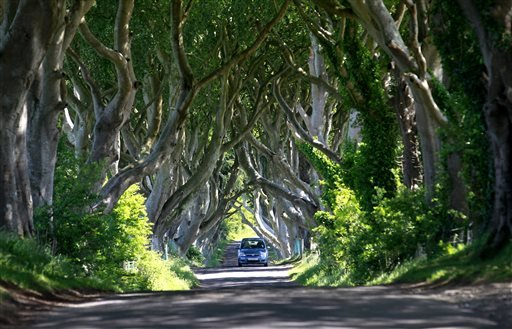 in-this-picture-taken-june-16-2014-a-car-travels-along-the-scenic-avenue-of-beech-trees-at-dark-hedges-situated-50-miles-north-from-belfast-in-county-antrim-northern-ireland-the-avenue-featured-in-season-2-of-the-game-of-thrones-as-ayra-stark-makes-her-escape-from-kings-landing