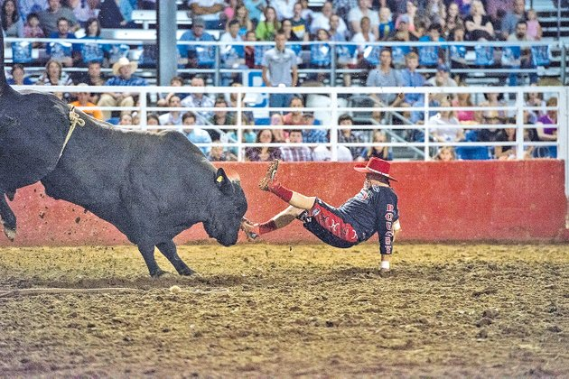 staff-photo-anthony-reyes-clay-collins-is-tossed-by-8220panther8221-on-wednesday-while-trying-to-protect-a-thrown-rider-at-the-rodeo-of-the-ozarks-at-parsons-stadium-in-springdale-collins-is-a-bullfighter-and-has-been-working-rodeo8217s-for-years-this-is-his-last-rodeo-before-retiring-from-the-sport