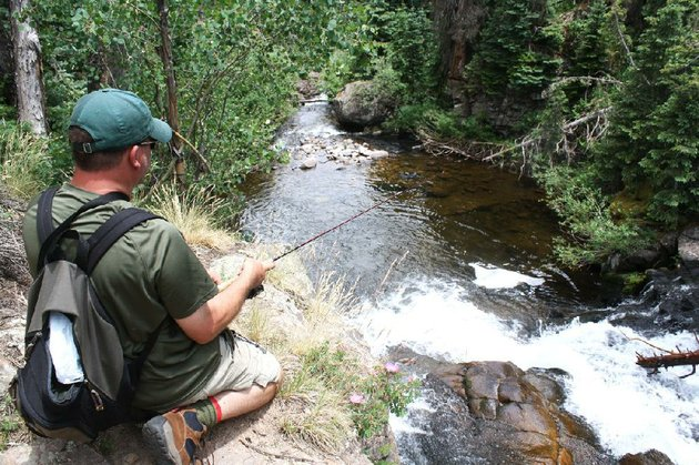 arkansas-democrat-gazettebryan-hendricks-bill-eldridge-hooked-and-landed-a-wild-brook-trout-from-a-pool-35-feet-below-on-the-south-fork-of-the-rio-grande-river