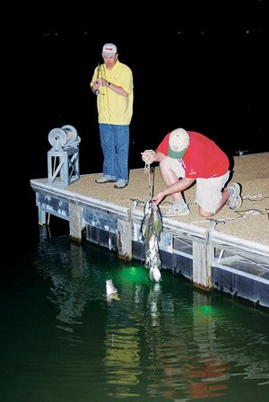 Fishing lights are often used by anglers in boats, but they're equally effective when fishing around docks, piers and other shoreline structures.