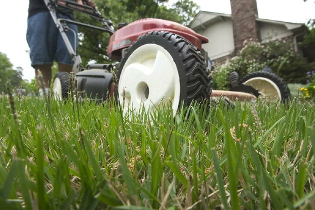 arkansas-democrat-gazetteclay-carson-now-is-the-time-to-start-mowing-your-lawn