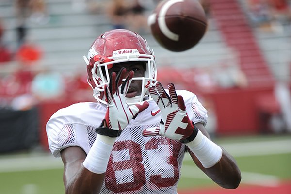 Arkansas sophomore tight end Jeremy Sprinkle makes a catch during practice Saturday, Aug. 16, 2014, at Razorback Stadium in Fayetteville.