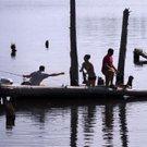 fishing wild art