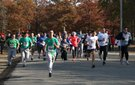 Reindeer Run for Reading