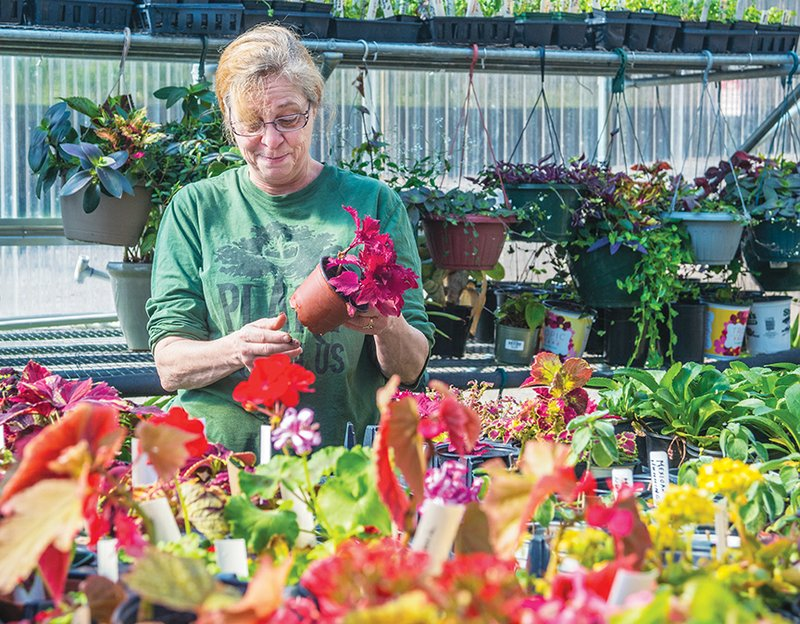 Garland County Master Gardeners To Hold Annual Plant Sale Saturday