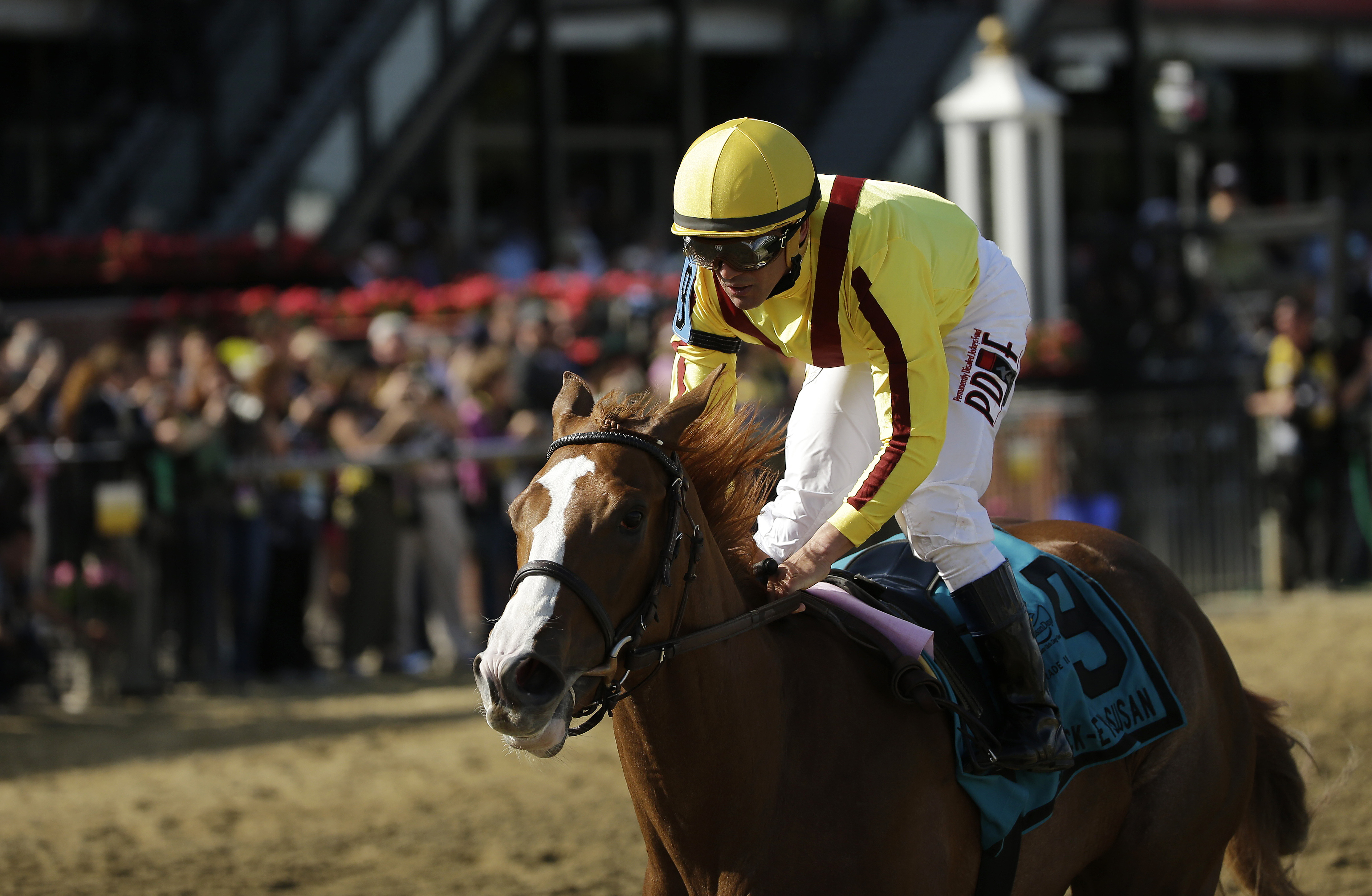 Javier Castellano Rides Keen Pauline To A Win During The