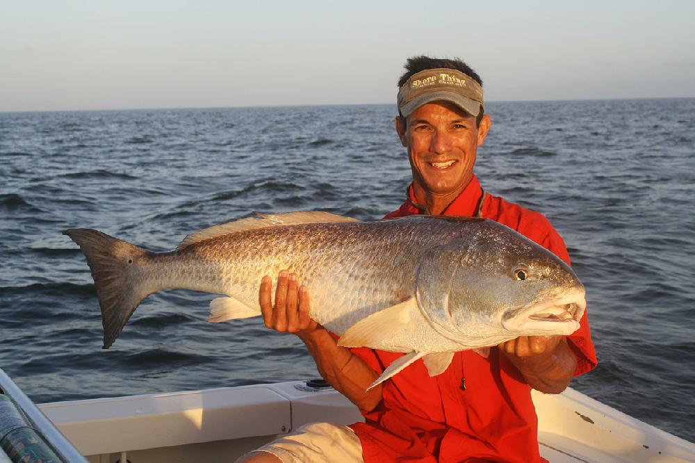 how to catch live bait for saltwater fishing