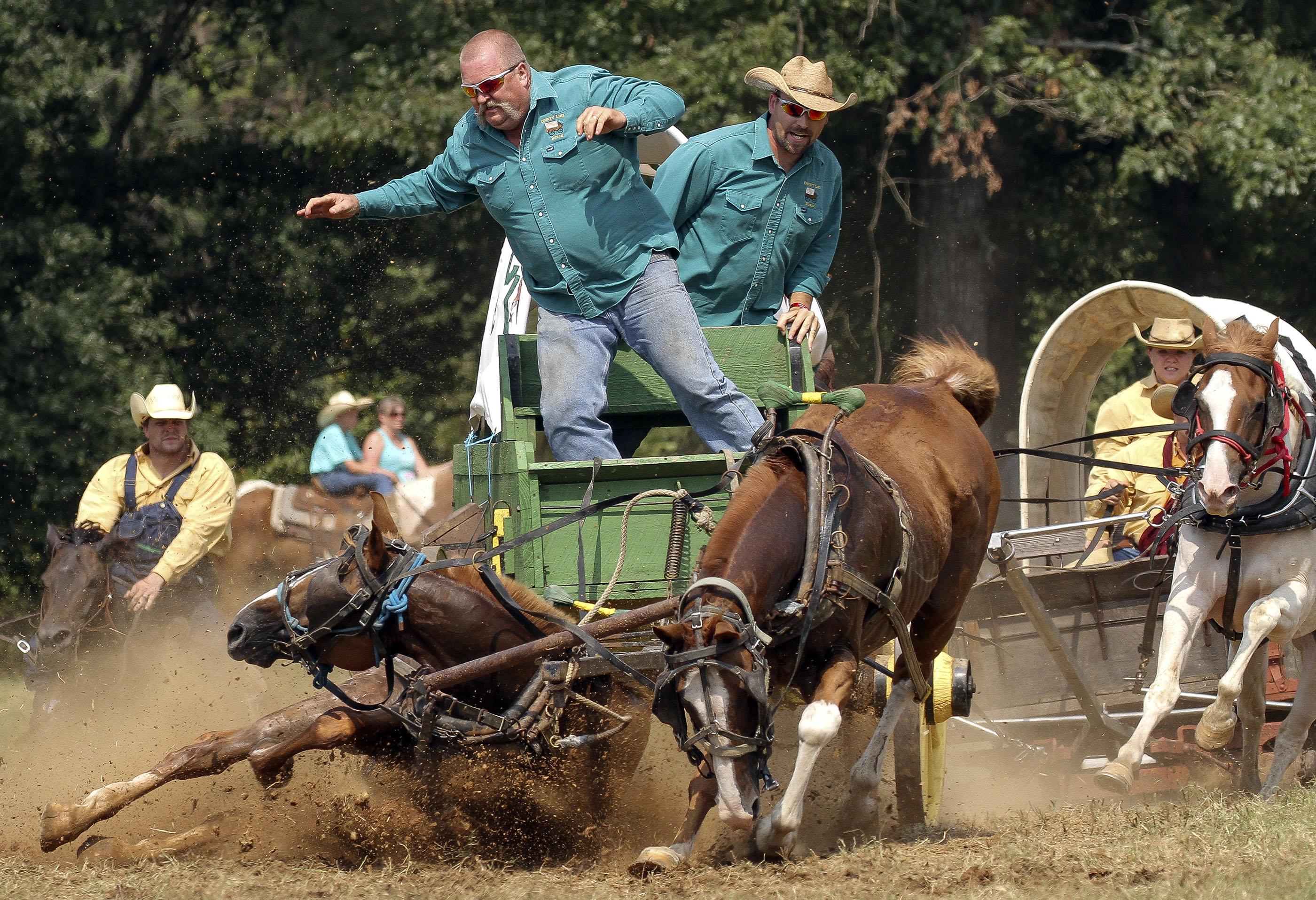 Chuck Wagon Racing The Wagon