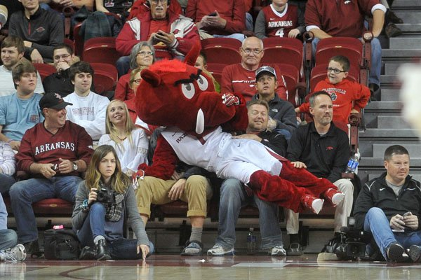 Big Red, Arkansas' mascot, lays on top of fans during the Razorbacks' game against Akron on Wednesday, Nov. 18, 2015, at Bud Walton Arena.