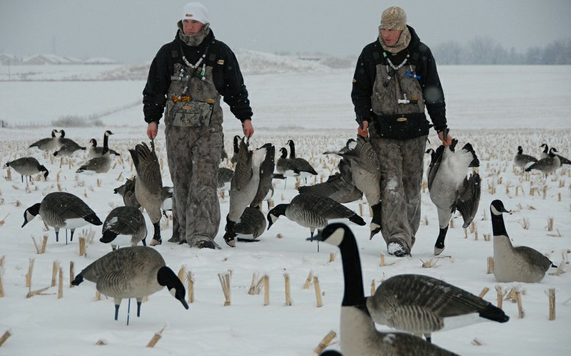 Goose Decoys For Sale >> Tips for hunting Arkansas' late-season Canada geese