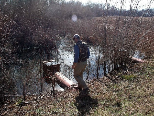 joel-whicker-checks-on-a-flooded-section-of-land-donated-to-the-us-department-of-agricultures-wetlands-reserve-program-during-a-tour-of-the-property-last-month