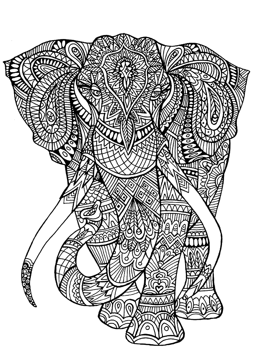 free coloring pages of elephant - photo#12