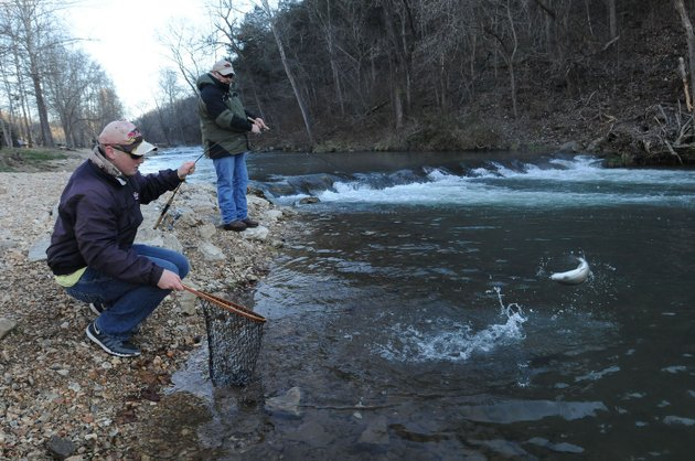 Love 39 em let 39 em go during catch and release trout season for Roaring river fishing