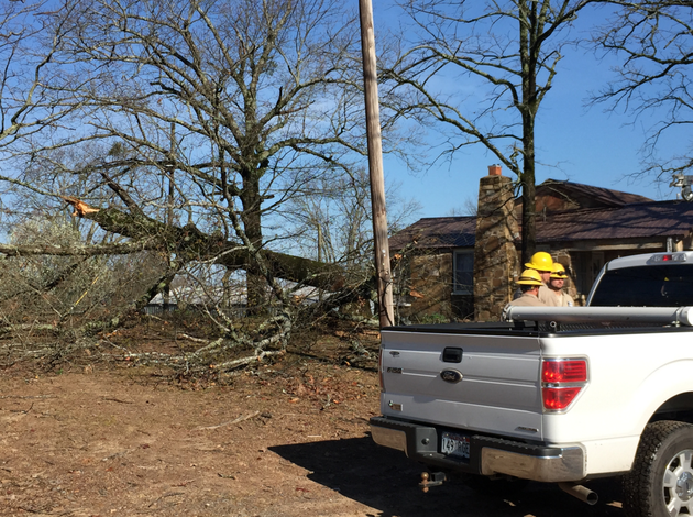 a-severe-storm-toppled-a-tree-in-wye