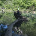 A root wad makes a fine fishing platform during a camping trip at the Buffalo National River.