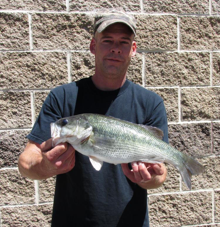 Spotted bass new missouri record nwadg for Missouri state record fish