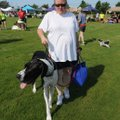 Tracey Bruner of Bentonville and her dog, Godzilla, head to the start area Saturday for the Northwes...
