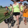 Kristin Switzer and her dog lead the start Saturday at the Northwest Arkansas Dog Walk to benefit ar...