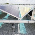 Solar panels are seen in detail June 29 at the O.N.E. Solar Facility. The facility has 4,080 solar p...