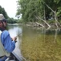 Tonkinson fishes near the root wad of a fallen tree June 17 during a float trip on Flat Creek in sou...