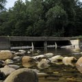 The Buffalo National River at the Ponca low-water bridge is busy with floating activity in higher wa...