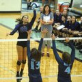 Haley Warner of Fayetteville High goes up to spike the ball Wednesday over Har-Ber's blockers at Har...