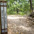 Newly installed trailhead markers designating trail difficulty are placed on a trail Thursday near C...