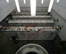 wild art library