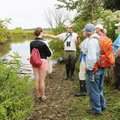 Master naturalist training takes place in the field and the classroom.