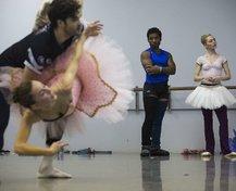 wild art ballet 03