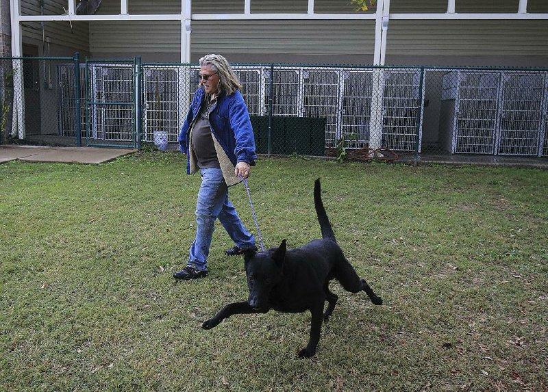 Pulaski County officials back spay, neuter efforts
