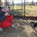Gage Williams, a shelter attendant for Fayetteville Animal Services, pauses Wednesday to take a phot...