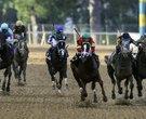 Oaklawn Rebel Stakes