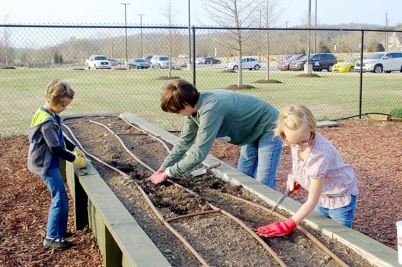 Community Garden growing, evolving