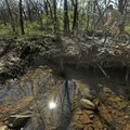 Todd Hansen of Fayetteville rides his mountain bike Thursday at the Kessler Mountain Preserve and Re...