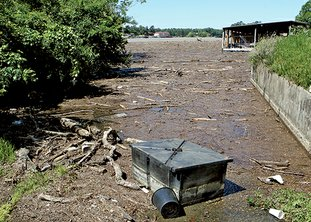 The Sentinel-Record/Richard Rasmussen LAKE DEBRIS: Debris washed into Lake Hamilton by overnight storms filled a cove near the Airport Road bridge on Monday. The U.S. Coast Guard Auxiliary is urging boaters to be cautious on area lakes due to floating debris.