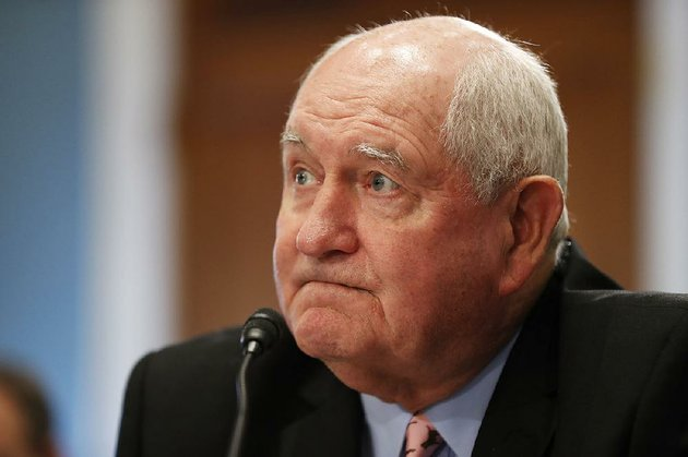 agriculture-secretary-sonny-perdue-testifies-on-capitol-hill-in-washington-wednesday-may-17-2017-before-a-house-agriculture-committee-hearing-on-state-of-the-rural-economy