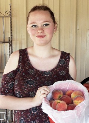 Photo by Randy Moll Carol Williams, 19, shows a bucket of peaches at Taylor's Orchard on Friday. The orchard opened Friday morning and will continue to offer peaches, nectarines and blackberries over most of the summer months. Orchard hours are 8 a.m. to 6 p.m., Monday through Saturday.