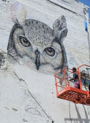 Murals art installations set to hit fayetteville nwadg for Artist mural contract