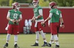 Quarterbacks Austin Allen (8), Cole Kelley (15) and Ty Storey (4) at Arkansas football practice Friday, July 28, 2017.