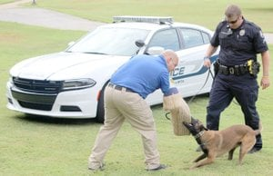 Keith Bryant/The Weekly Vista Officer Justin Green, left, wears a protective sleeve for police dog Cabo to practice biting when commanded by K9 officer Travis Trammell.