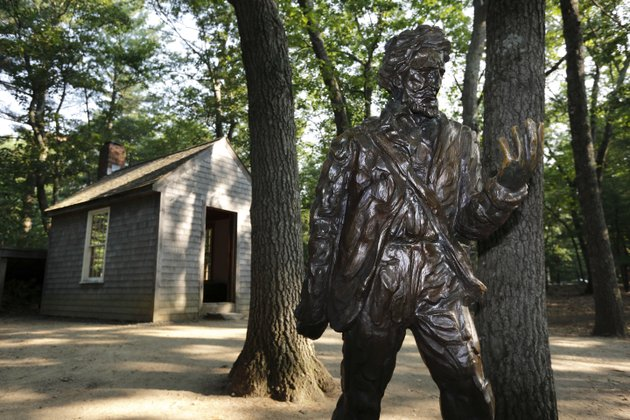 a-statue-of-henry-david-thoreau-stands-outside-a-replica-of-his-cabin-near-the-shores-of-walden-pond-in-concord-mass