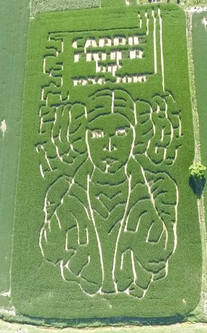 """This July 12, 2017, photo provided by Jeremy Goebel shows a corn maze with trails outlining the face of """"Star Wars"""" character Princess Leia."""