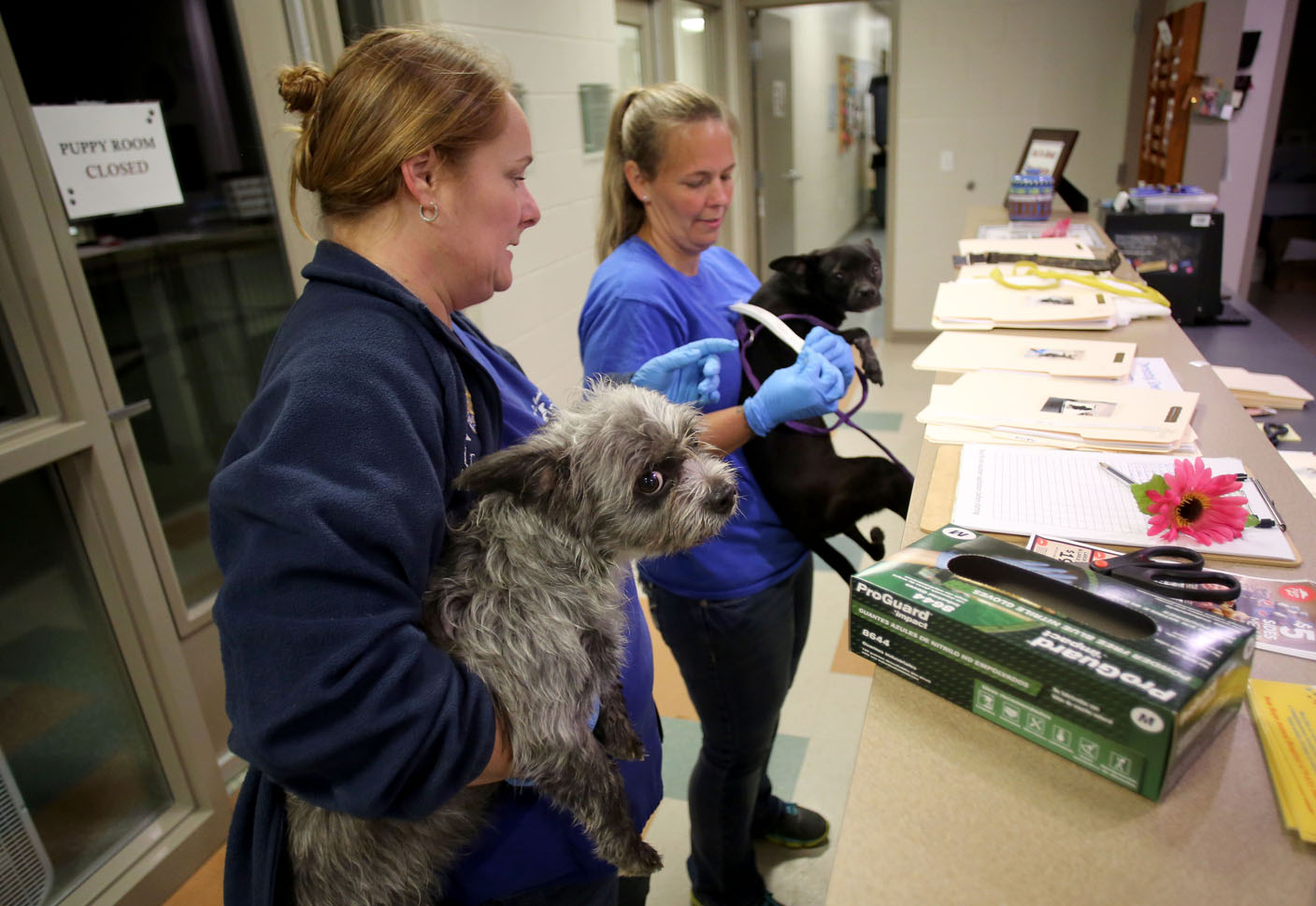 VIDEO: Relocation lowers Washington County animal shelter population, reduces budget