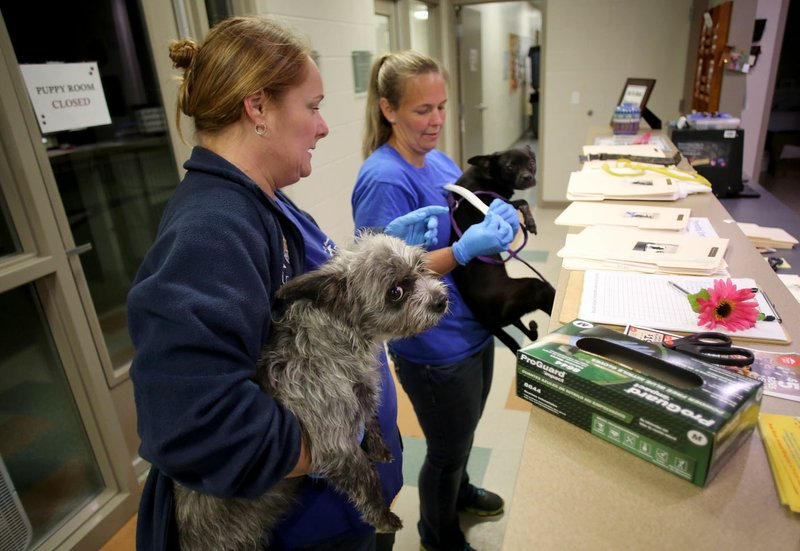 VIDEO: Relocation lowers Washington County animal shelter population