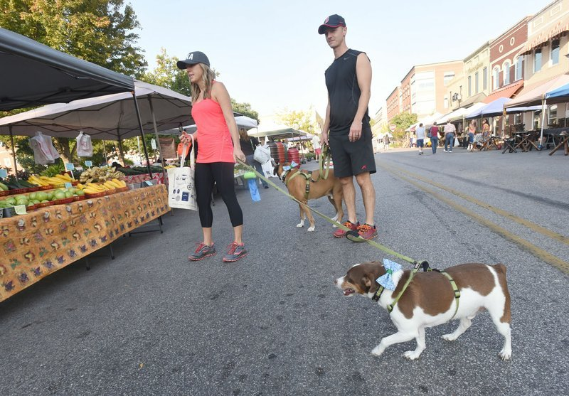 Dogs becoming more welcome at Northwest Arkansas businesses