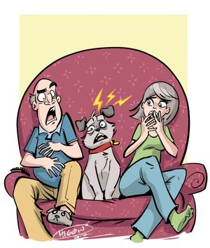 Arkansas Democrat-Gazette pet seizure illustration.