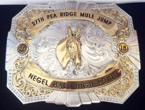 TIMES photograph by Annette Beard Montana silversmith belt buckle