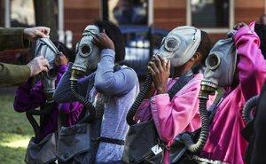 wild art gas masks