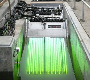 The Sentinel-Record/Richard Rasmussen